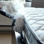 Membasmi Tungau Lebih Efektif Dengan Steam Cleaner Kleencare
